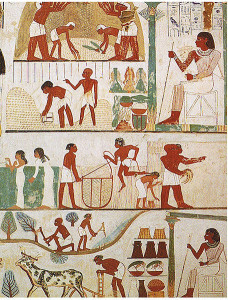 A tomb relief depicts animal husbandry and farming image source: https://commons.wikimedia.org/wiki/File:Tomb_of_Nakht_(2).jpg